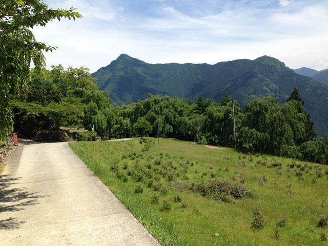今上天皇の大嘗祭の折に「斎麻畑」となった三木家住宅・資料館前。