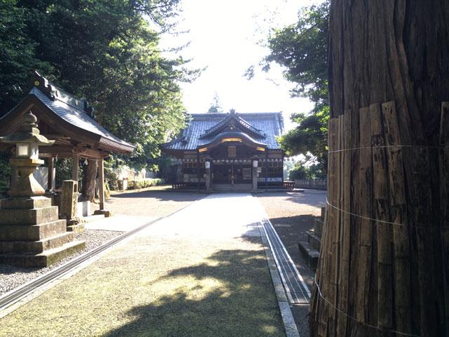 愛媛・内宮神社(参道からみた社殿)